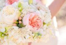 Wedding / by Ashley Murray