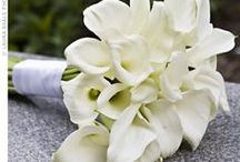 Beautiful Blooms / Wonderful ideas for flowers for your Wedding!