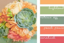 Colorifics / Fun color combinations that probably wouldn't pop into your mind without a bit of crazy inspiration! / by Angie