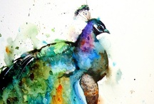 Peacocks & Feathers / by Kirsten Becker