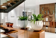 Glass & Wood  / A collection showing the beauty of Glass & Wood combined in design.