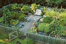 Garden Inspiration / Love your garden!