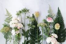 Flowers | Make them even more beautiful / Beautiful blooms and stunning arrangements, indulge your inner florist.