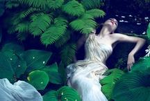 shoots : inspiration : bridals