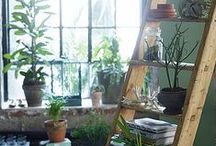 Inspiration for my home / Ideas and dreams for my home with room indoors and out.