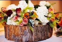 Eco Wedding Ideas / Eco weddings are just beatiful and there is so much out there that is eco friendly.
