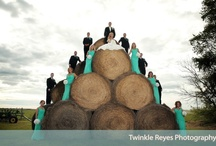 Wedding photography  / by Rachael Young