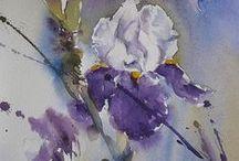 Watercolour - irises