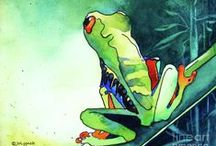 Watercolour - frogs and chameleons