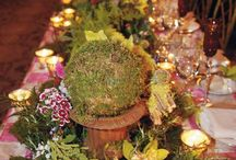 Midsummer Night's Dream Themed Weddings / Enchanted forest and full of shakespeare's quotes.