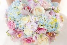 Pastel Colour Scheme / Pastels are just so pretty and fresh especially for a spring wedding