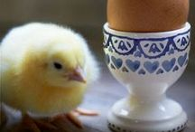 Easter Gifts / A selection of handpicked Easter gifts for friends and family