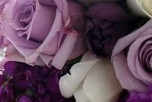 Purple Colour Scheme / Majestic purple, always looks gorgeous.