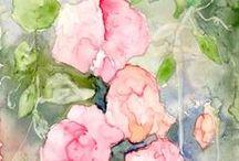 Watercolour -sweetpeas