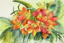 Watercolour - yellow and orange flowers