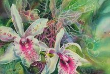 Watercolour - orchids