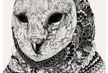 Illustration / by Joffrey Escudier