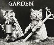GARDEN / #garden #ideas #gardening #composting