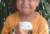 Children with Animals / Little Children Love Animals