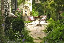 Outdoors/ Gardens
