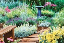Garden inspiration / Ideas to possibly incorporate into our garden
