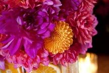 I Hope He Buys You Flowers / by Danae Zahorsky