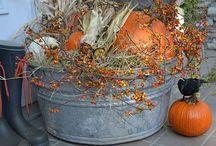 Fall / by Jacklyn Launi