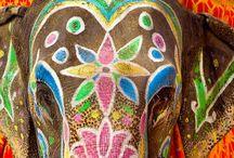 india+color / by Mark Daniel Dalacat