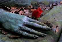 Cemetery's & Life & Death