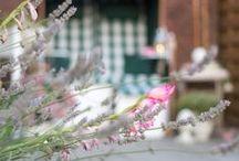 cozy & cuddly - schönes für mich und mein Zuhause / Die schönsten Rezepte, DIY-Ideen und Interior-Bilder aus meinem Lifestyle-Blog www.cozy-and-cuddly.de