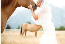 Wedding Ideas for ME! / by Chelsey Shivley