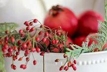 Red & White <3 / by Rita Schneider