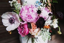 wedding ideas. / links I used to help plan my wedding. I hope they help you, too!  / by Rebecca Oleksa