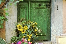 DRAMATIC DOORS / Doors do more than welcome you inside.  They command your attention as they stand guard of their structure. / by Carolyn Fisk