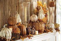 Gotta Love Halloween and Fall, Boo!!! / by Karen Brehob