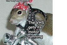 The Very Hip Squirrel / The VHS is a great friend of Anna Sophia OnlyHearts