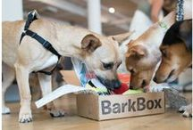 Pet Products / PetTrax is always on the lookout for cool pet products to keep your pet healthy and happy