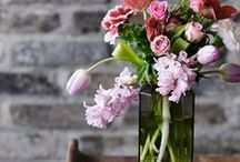 Flowers / Are you seeking flower inspiration for a special occasion? Find gorgeous flowers, flower arranging ideas and creative ideas for displaying them here.