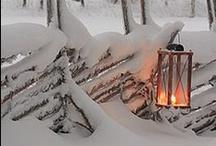 Winter Wonderland / by Julianne Krijgsman