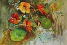 Nasturtiums / O.i. Kers een prachtige bloem om te schilderen en te eten.