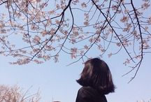 -seasons | spring