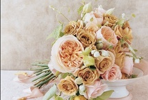 Style:: Shabby Chic Wedding / by Couture Events