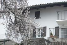 Casa Bonomelli
