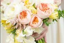 Favorites:: Bouquets / by Couture Events