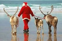 Dashing Through The Sand / Our love of all things festive...at the beach.