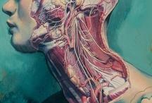 Art to Choke Hearts / A miscellany of artwork I adore. / by Molly O'Blivion