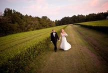 Our Wedding Venue / Please join us at one of the most beautiful and unique wedding venues in the country, The Charleston Tea Garden. {call 843-559-0383 Ext. 206 or visit www.charlestonteaplantation.com} / by Bigelow Tea