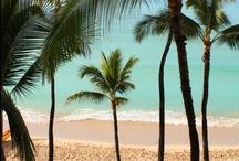 Next to Paradise