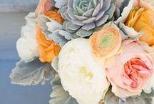 palette spark /  inspired wedding palettes