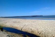 Hermosos paisajes y relajantes. / Uruguay una parte del mundo bueno para el fin del estrés.